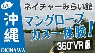 VR動画で沖縄 ツアー『マングローブ カヌー体験 』4K 360°カメラの動画