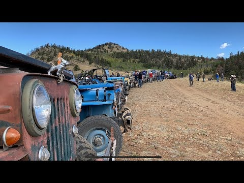 Willys Jeeps - Colorado Fall Color Tour 2019