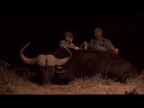 Mark Pratka - Buffalo Bow Hunt 2014