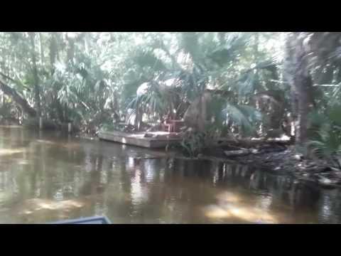 Enjoying my mudskipper longtail mud motor kit with a z bend handle - YouTube