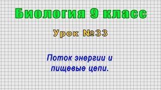 Биология 9 класс Урок 33