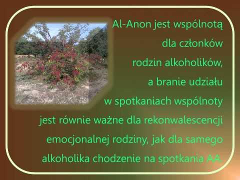 Echinacea nalewki i alkohol