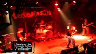 Toxoplasma - Deutsch im Kaltland - Live Kassablanca Jena 08.04.2006