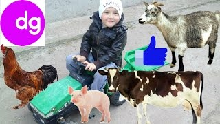 ЖИВОТНЫЕ ДЛЯ ДЕТЕЙ В ДЕРЕВНЕ. ТРАКТОР НА ФЕРМЕ.Animals FOR KIDS on the farmTRACTOR one the FARM