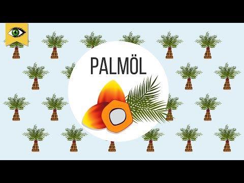 Das Problem mit dem Palmöl: Regenwaldzerstörung, Artensterben, Erderwärmung.. - Schlaumal - Doku