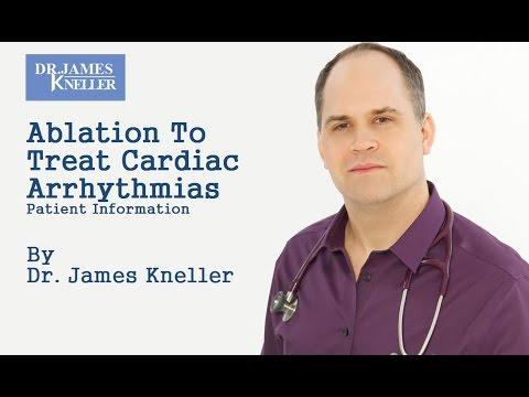 Meet Dr. Kneller Speaks
