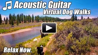 Acoustic Guitar Instrumental Virtual Walking Tour DOG WALKS RIVER Treadmill Video Walk at home Relax
