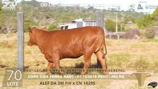 Coro 2365 b4