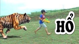 Dương đi săn Hổ và Cá sấu, Kênh Em Bé ✅