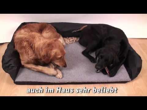 Autobett für Hunde | HUND-unterwegs.de