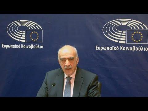 Ο Bαγγέλης Μεϊμαράκης στη συζήτηση των ευρωβουλευτών για τα Βαρώσια