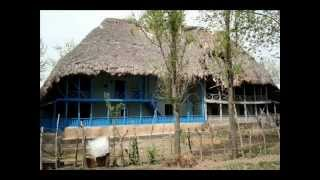 Әли Насир -- А Гиләво - Талышская музыка