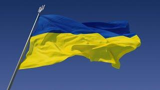 Таможня - Английский Видео-Разговорник