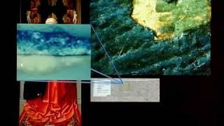Renaissance Venetian Colore: A Material Thing