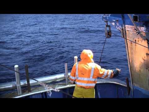 Servizi di ricreazione e fishings Akhtuba