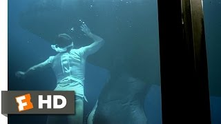 Star Trek 4: The Voyage Home (4/10) Movie CLIP - Swimming with the Whales (1986) HD