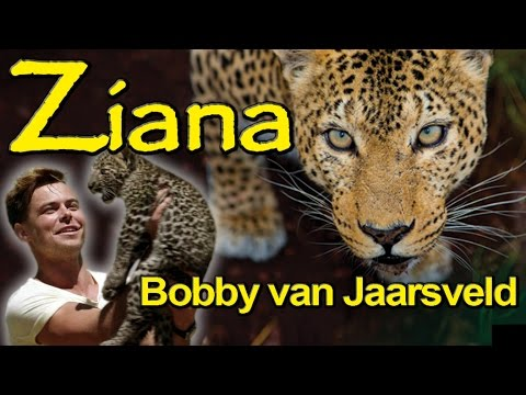 Ziana song preview – Bobby van Jaarsveld