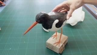 Guess The Wooden Bird