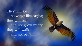 Soar on wings like eagles (Isaiah 40:28-31)