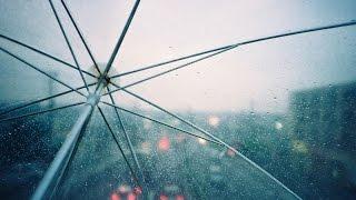 Релакс. Звуки природы. Шорох дождя по зонту.