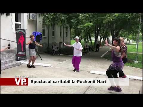 Spectacol caritabil la Puchenii Mari