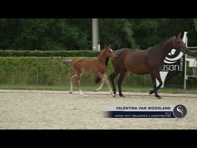 Valentina van Woodland