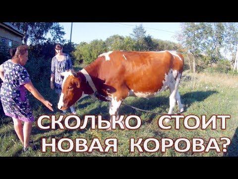 Жезл удачи скачать на русском