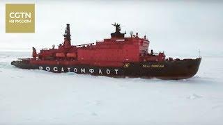Северный полюс Серия 2 Жители крайнего севера Часть 2[Age0+]