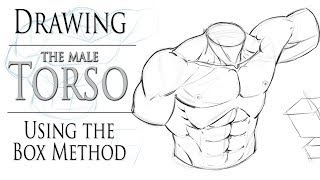 Drawing The Male Torso - Boxing In Method