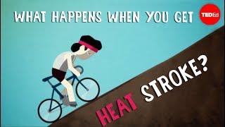 What happens when you get heat stroke? - Douglas J. Casa - Video Youtube