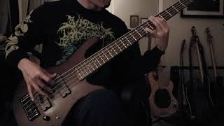 Beyond Creation - Entre Suffrage Et Mirage (Bass Cover / HX Stomp + Darkglass Alpha Omega Test)