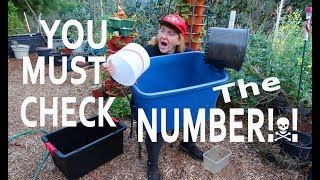KNOW What is SAFE to Grow Vegetables in CONTAINER GARDENING-Best Raised Beds Storage Container Totes