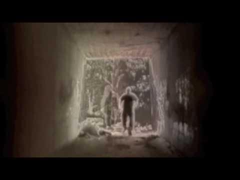 RoweBots Music Video