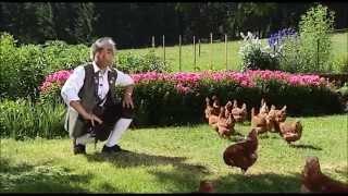 Смотреть онлайн Песня про куриц со странным клипом