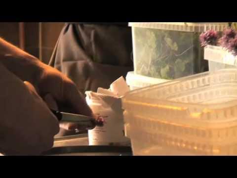 Vezi aici care este cel mai bun restaurant din lume – VIDEO