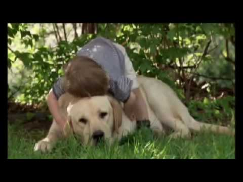 Trattamento della gamba intorpidimento ernia spinale