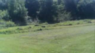 preview picture of video 'apercu-club-et-terrain.wmv'