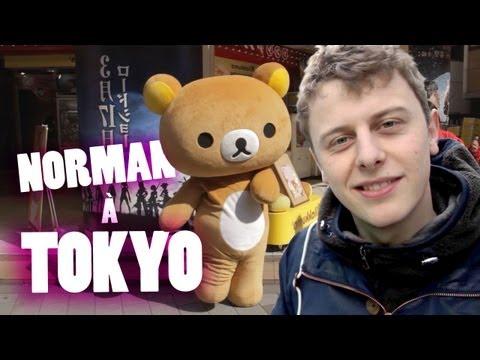 Norman v Tokiu - Norman