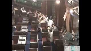 Массовая драка индийских парламентариев