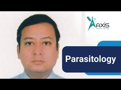 Gyógyszerek a paraziták nemosol
