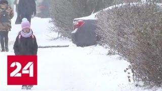 """""""Погода 24"""": зиме придется потесниться - Россия 24"""
