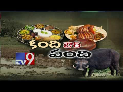 Brahmins fume over Collector's comments on Beef - TV9