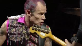 Red Hot Chili Peppers - Intro + Can't Stop -  Lollapalooza Chicago 2016 HD