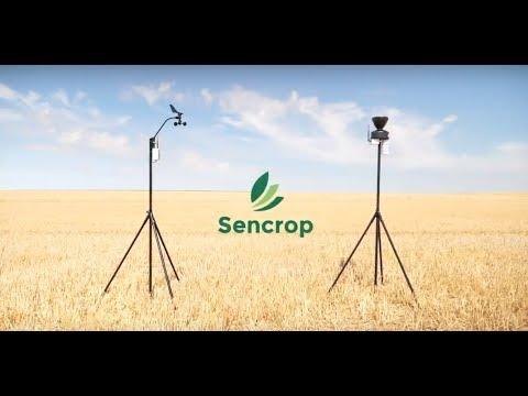 Installation Raincrop & Windcrop