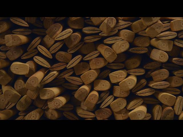 Vidéo Prononciation de Bruk en Anglais