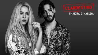 Shakira, Maluma   Clandestino İndir/Download