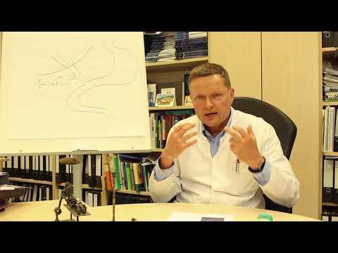 Welche Analysen man für die Aufspürung der Parasiten in der Leber abgeben muss