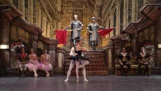 Swan Lake - Black Swan (Nina Kaptsova - Artem Ovcharenko)