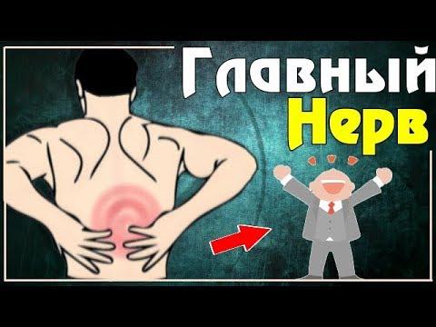 Болит шея и температура причины