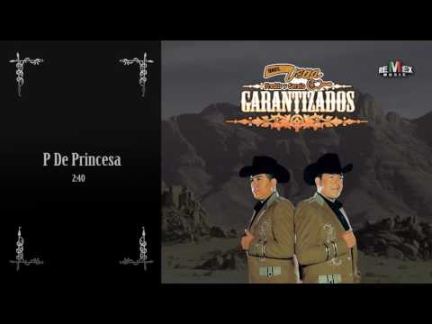 P de Princesa - Hermanos Vega Jr (Audio Oficial)